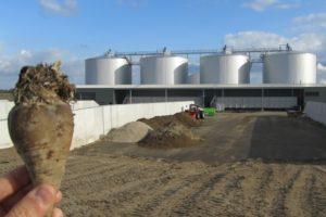 Biogas als alternatief voor aardgas?