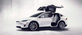 Kamp wil Teslafabriek in Nederland