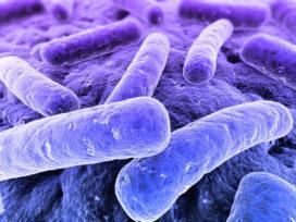 NEN-EN-ISO 11731 'Telling van Legionella' gepubliceerd