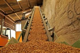 'Classificatie van biomassa voor energietoepassing' herzien